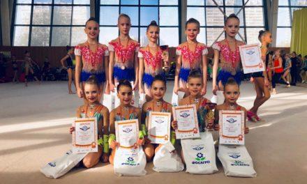 Соревнования по гимнастике в г. Москва